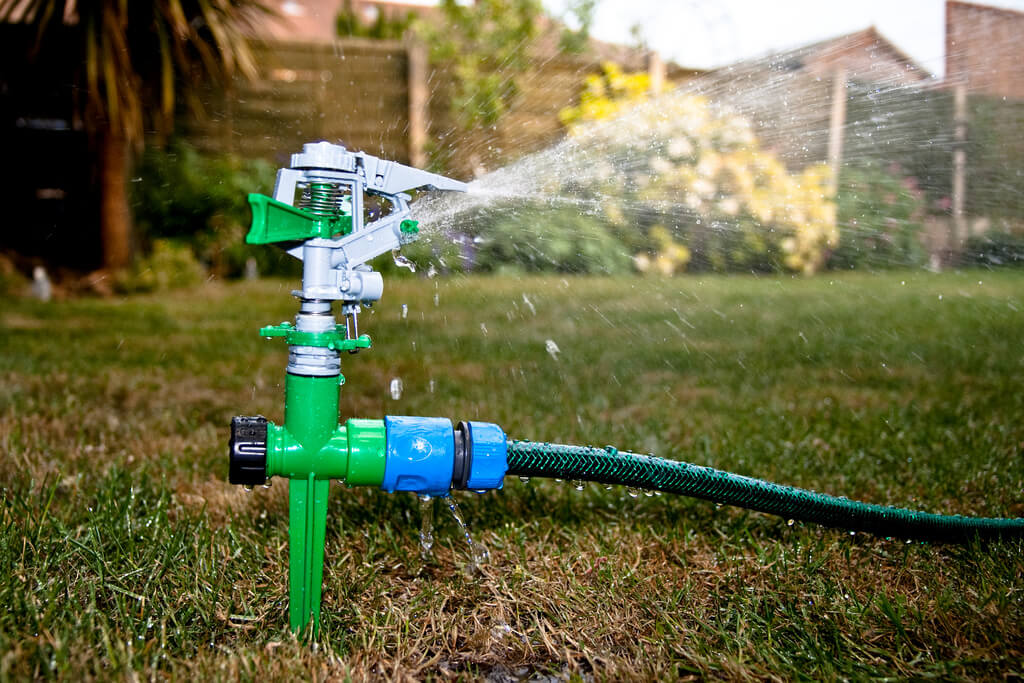 Should I Water My Lawn In Winter Or Fall Arbor Nomics