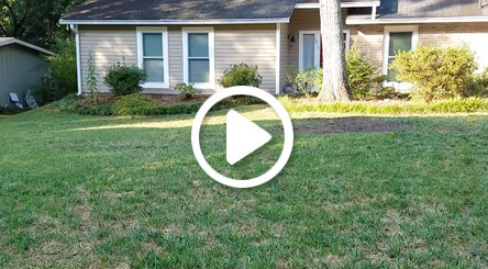 video of atlanta lawn care aeration and overseeding service