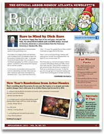 The Buggette 2019
